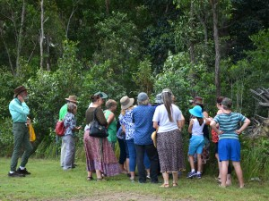 Section of people eager to hear what Kelvin Nielsen had to say at the Butterfly Day at Tinana.